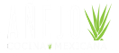 Anejo Cocina Mexicana Logo